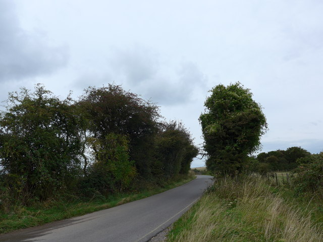 South Downs Way, Exton to Buriton (202)