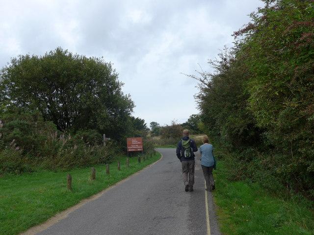 South Downs Way, Exton to Buriton (205)