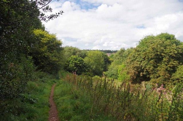 Path Through Hartshill Park LNR