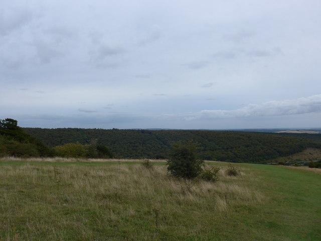 South Downs Way, Exton to Buriton (217a)