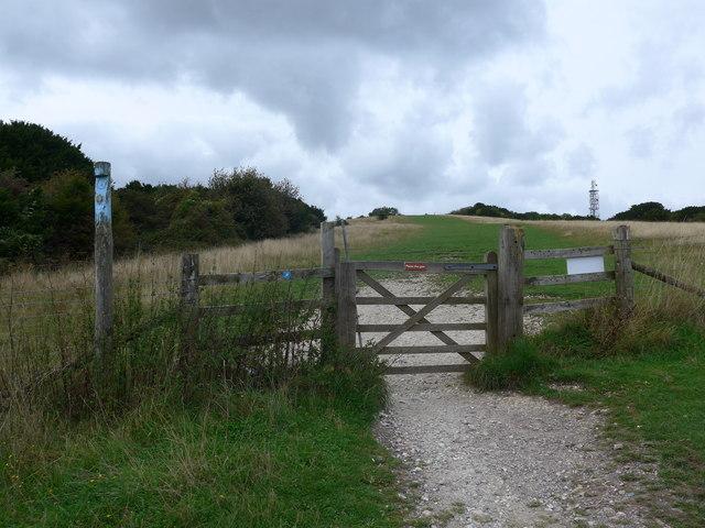 South Downs Way, Exton to Buriton (218)