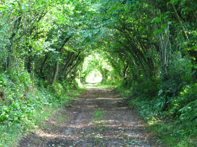 Old lane to the ferry