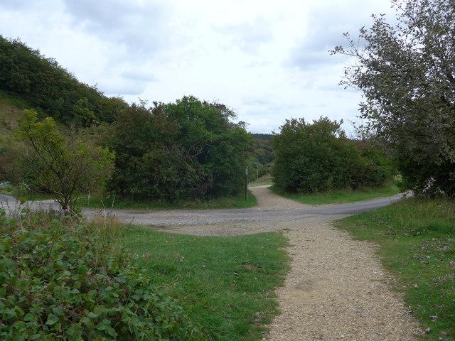 South Downs Way, Exton to Buriton (224)
