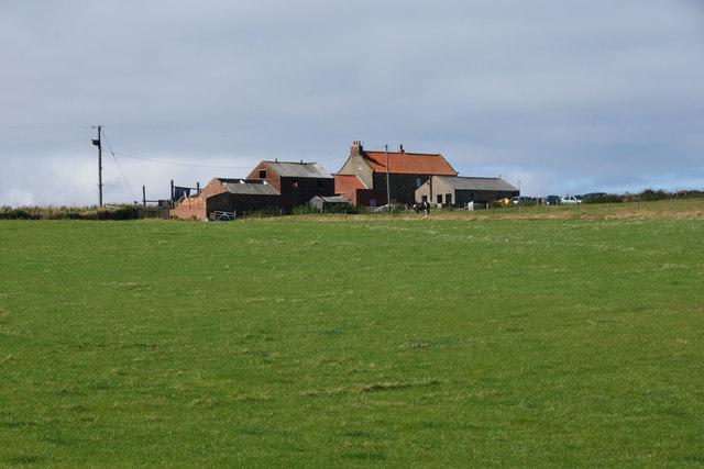 Widdy Field Farm