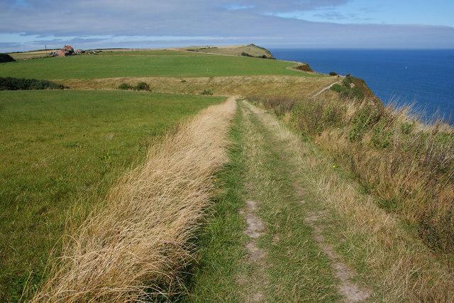 The coastal path near Gnipe How