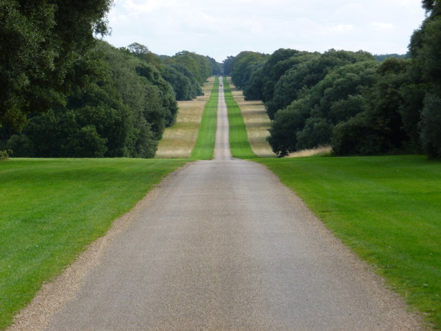 The Avenue south of Holkham Hall