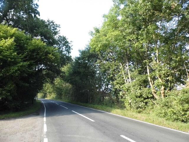New Lane, Sutton Green