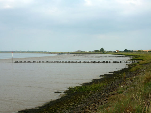 Groynes, Raypits Reach, River Crouch