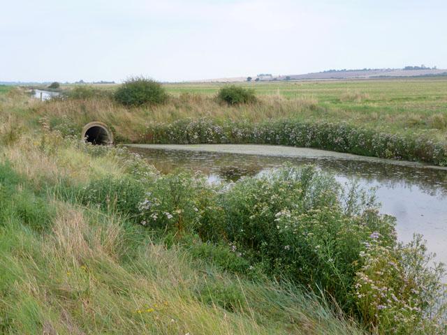 Borrow dyke behind sea wall, River Crouch