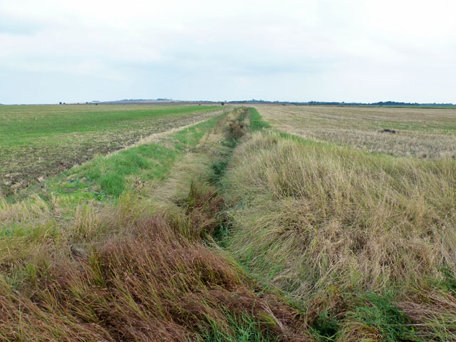 Drainage ditch near South Fambridge Hall
