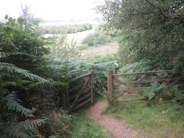 Gateway at the north end of West Hill Wood