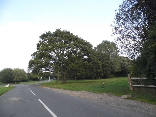 Wood Street Green looking towards Oak Hill