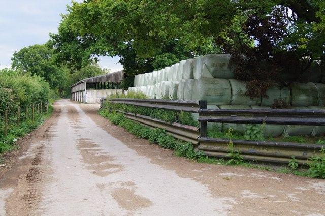 Silage bales - Berrydown Farm