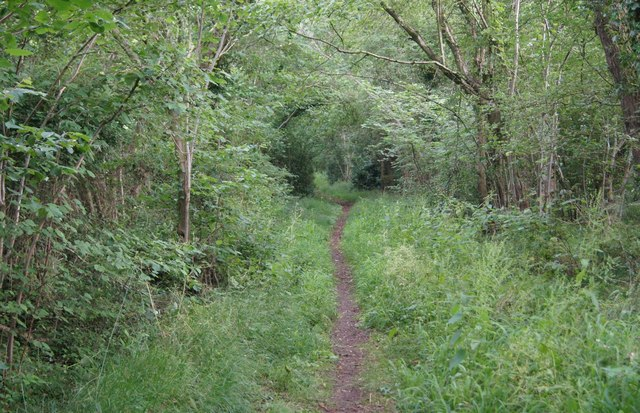 Footpath to Waltham Lane