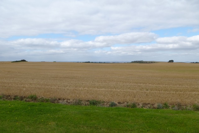 Farmland near Tindall House