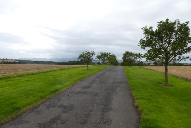 Bridleway to Tindall House