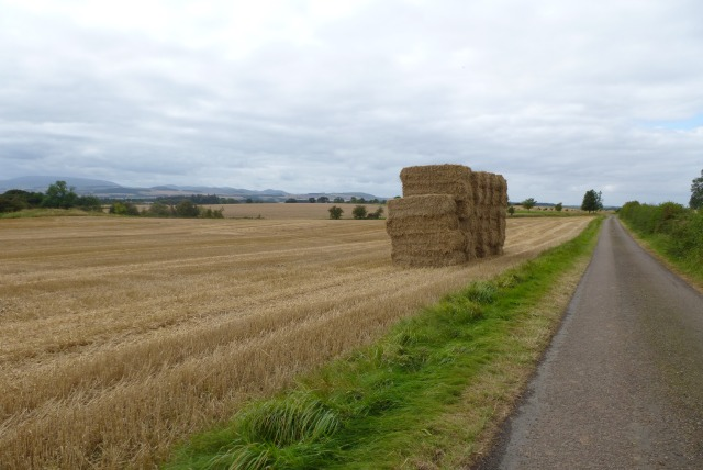 Bales beside the road