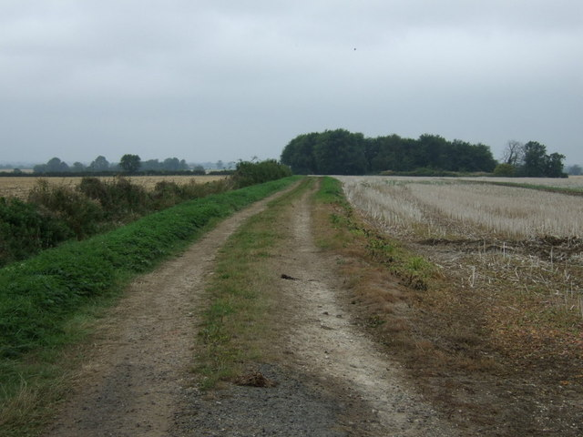Farm track heading west, Swinthorpe