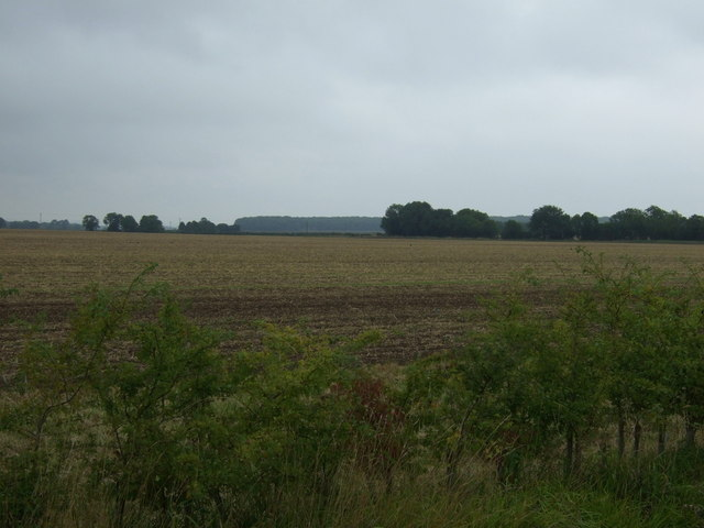 Farmland north west of Snelland