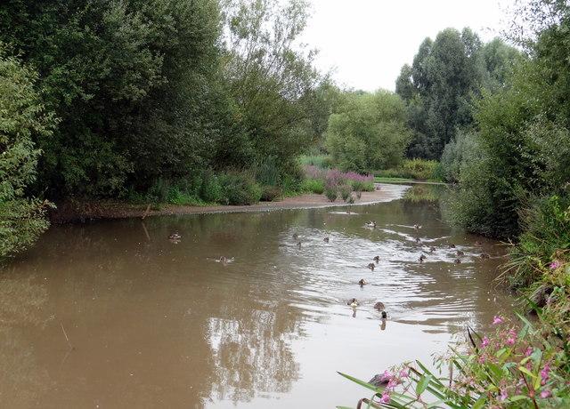 Hankridge Park