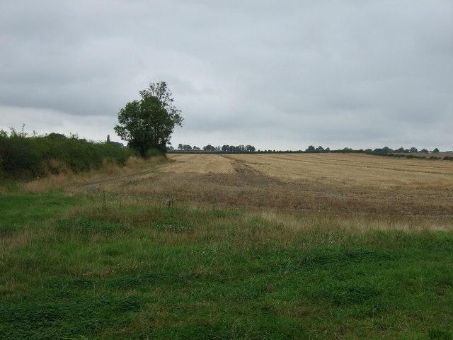 Farmland off Market Rasen Road