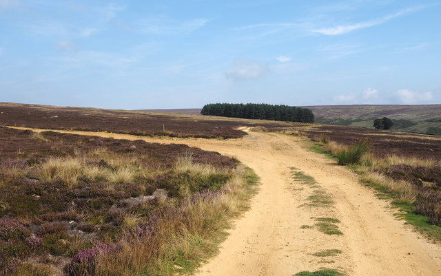 Estate road junction on moorland above Arns Gill