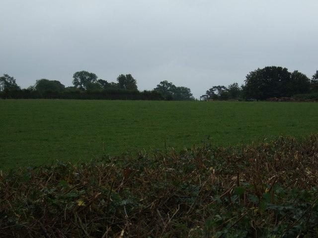Farmland, Friesthorpe