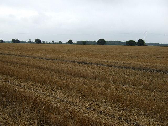 Farmland near Faldingworth