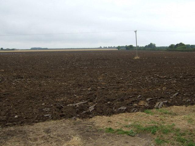 Farmland off Buslingthorpe Road
