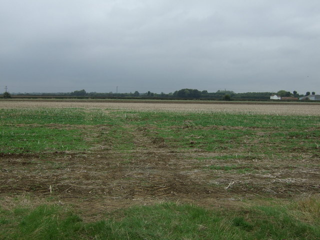 Farmland west of Lissingley Lane