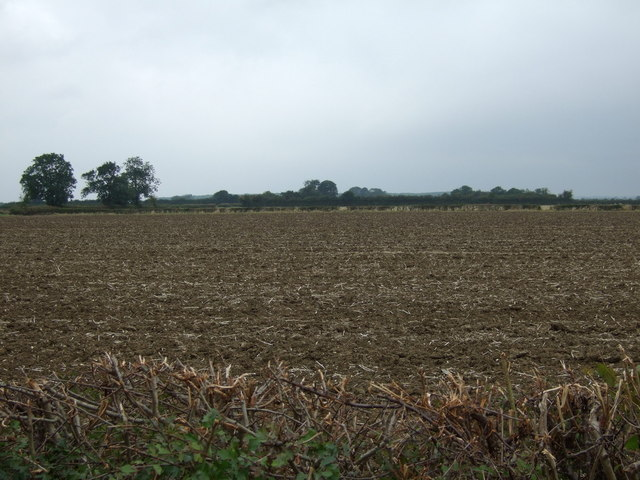 Farmland off Lissingley Lane