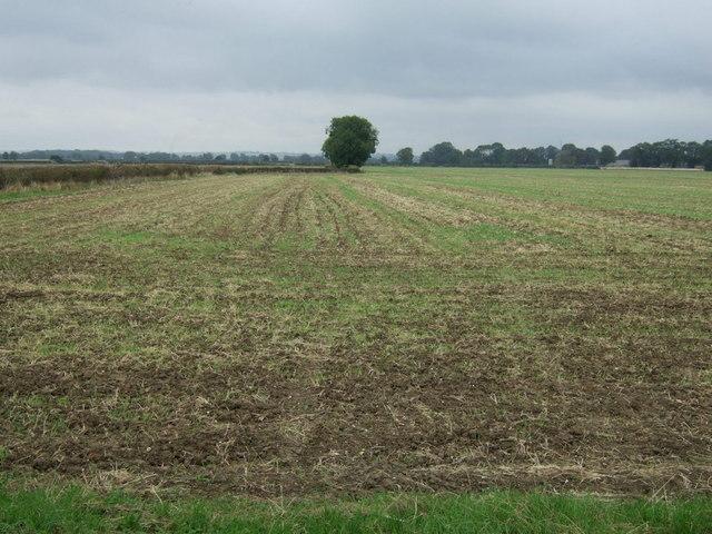 Farmland near Lissington