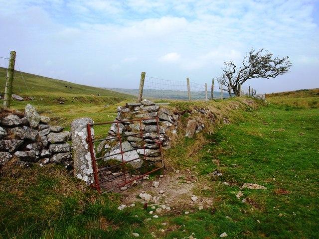 Field Boundary Below Bray Down
