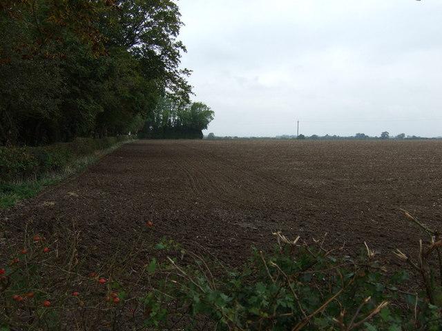 Farmland, Field House Farm