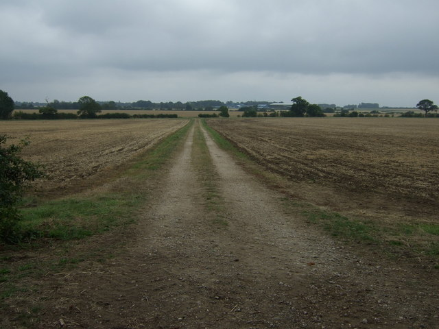 Farm track off Lissington Road