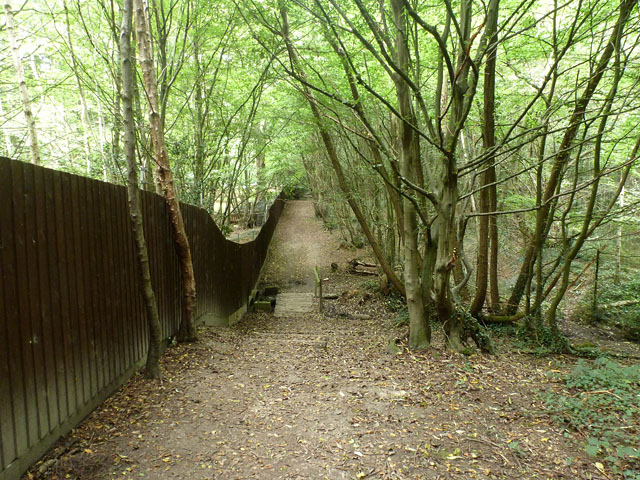 Boundary path, Hockley Woods