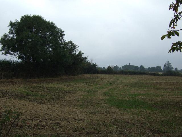 Farmland off Westlaby Lane