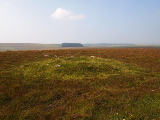 Cairn, High Moor