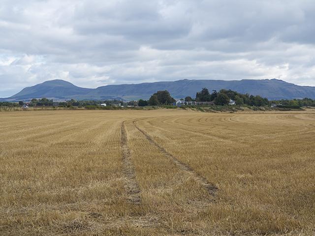 Farmland at Balado