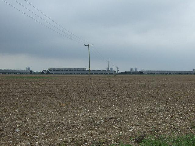 Farmland towards poultry farm