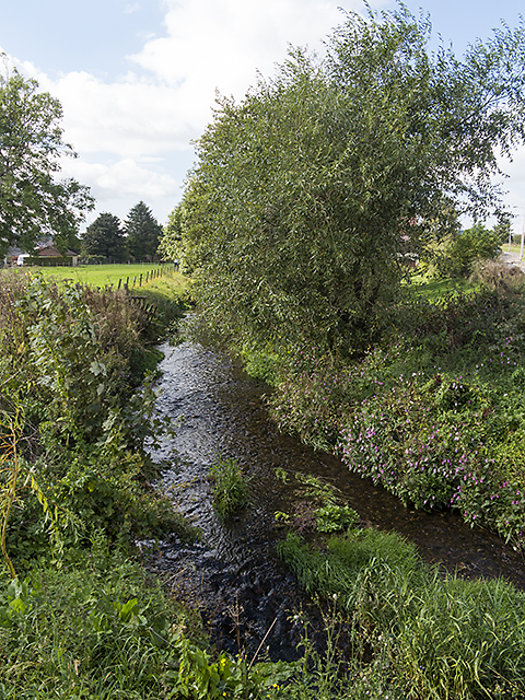 River Eden at Strathmiglo