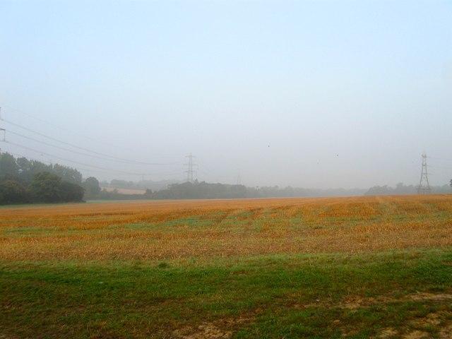 Bolney Mead