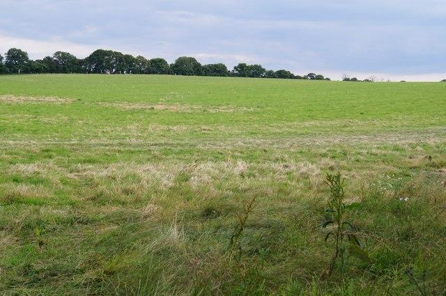 Fields east of Sapley Farm House