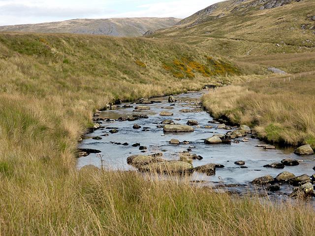 Afon Rheidol, looking upstream