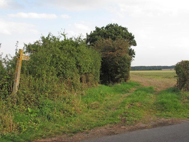 Public footpath on field entrance near Pointers Farm, Tolleshunt D'arcy