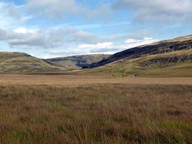 Bog to the south of Banc Llechwedd-mawr
