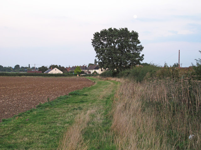 Field margin on tilled land near Barnhall Road, Tolleshunt Knights