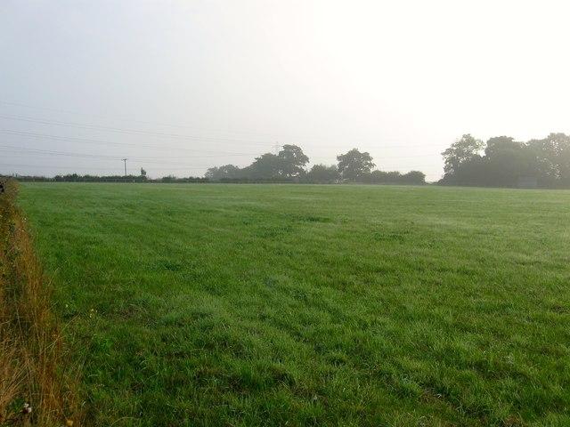 Further Bob Field
