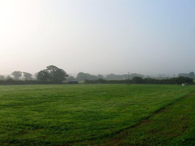 Little Furze Field