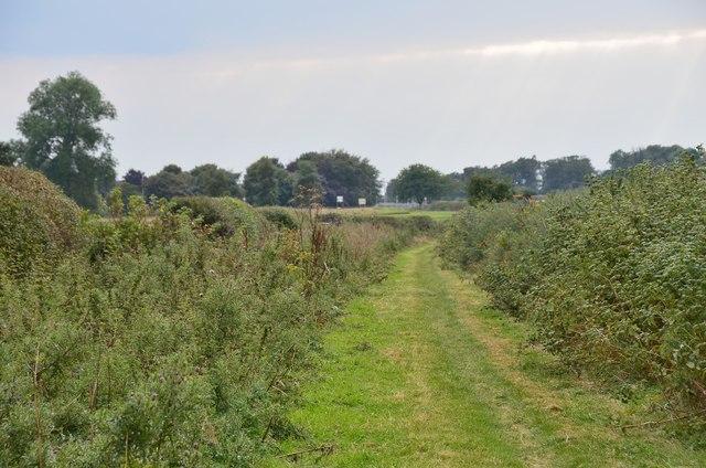 Path near Kelso Racecourse